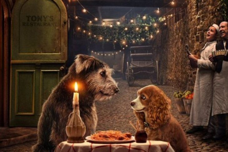 Trailer Lady and the Tramp voorgesteld op D23